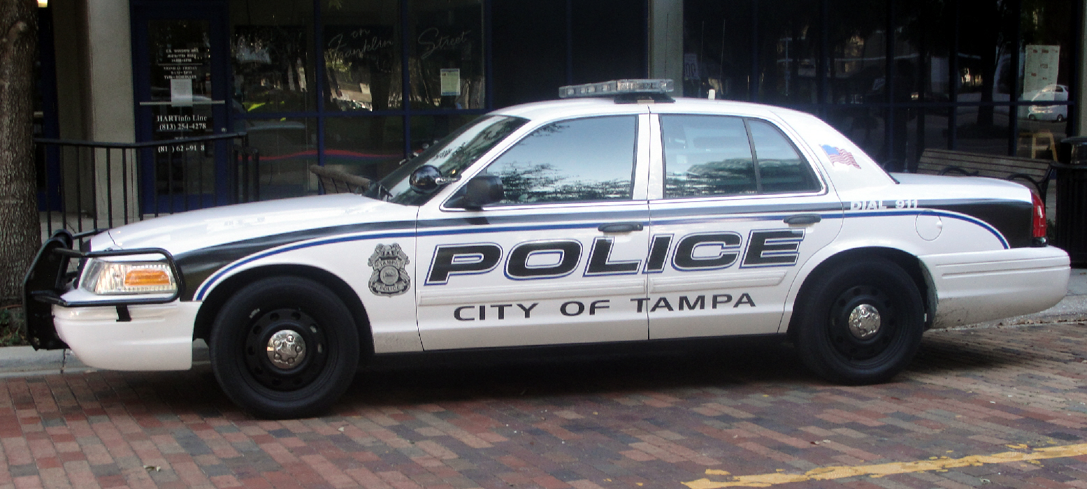 Florida department of motor vehicles tampa vehicle ideas for Hillsborough county motor vehicle registration